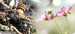 投棄されたゴミ、花